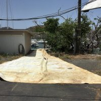"""54'X 50"""" X 20"""" 4"""" Genoa With Roller Furling Tape (Used)"""