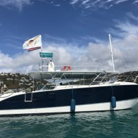 Auction: 2012 Navalcat Dive Catamaran 45' (Motivated Seller)