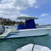 2013 28T Ocean Aqua