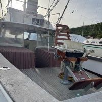 Bertram 31 boats