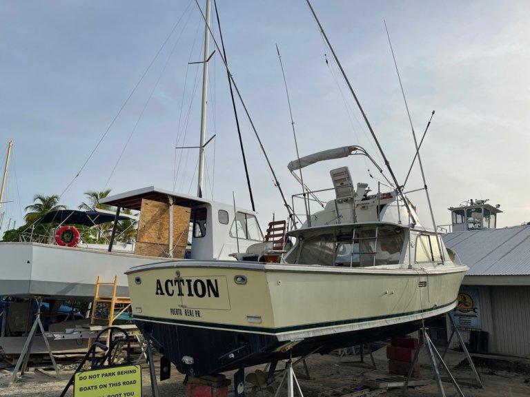 Bertram 31 boats for sale