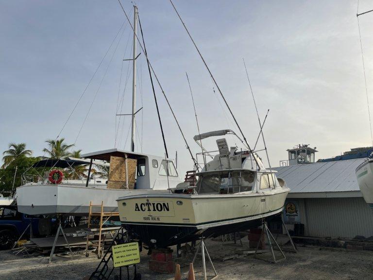 Bertram 31 boats sale
