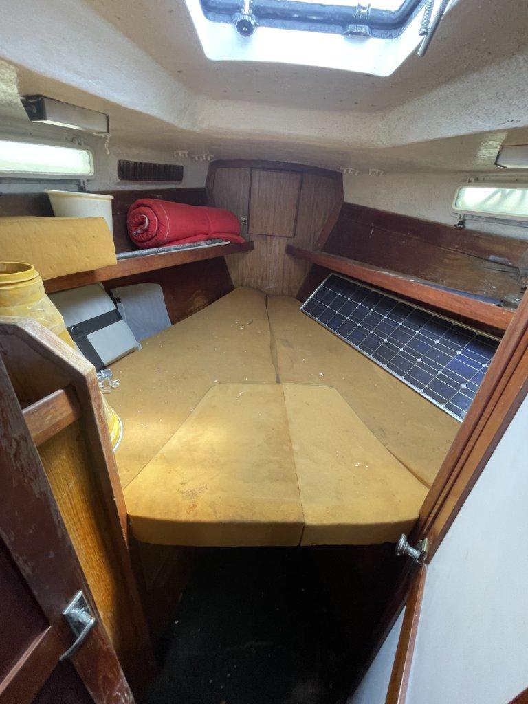 1981 Steven 39 New Auction Estate Sale